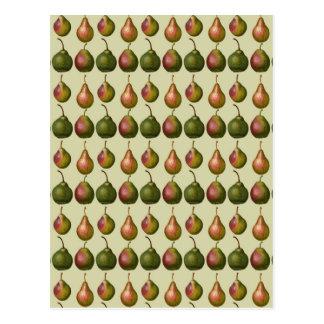 Carte Postale Variétés de poires