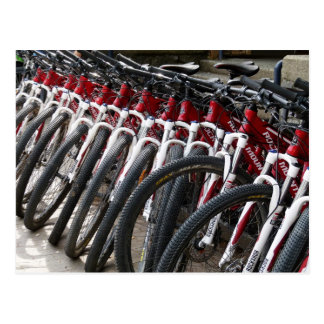 Carte Postale Vélos de montagne dans une rangée
