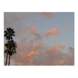 Carte postale vide d'art de palmiers et de nuages