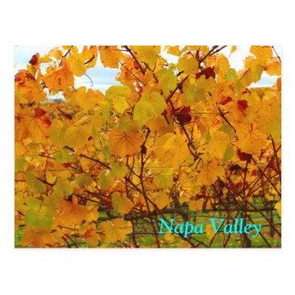 Carte Postale Vignoble de pays de vin de Napa Valley
