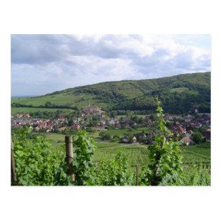 Carte Postale Vignobles d'Alsace