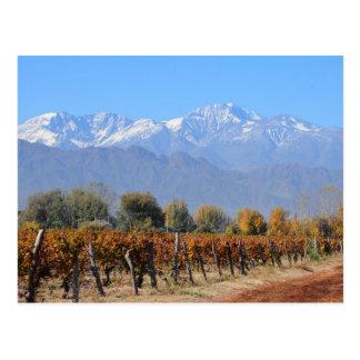 Carte Postale Vignobles en automne de Mendoza, Argentine