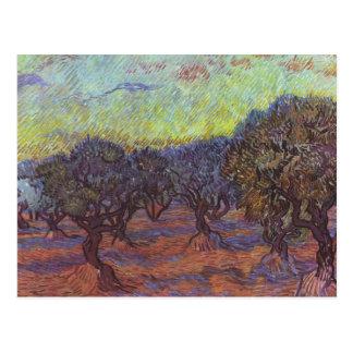 Carte Postale Vincent van Gogh - verger olive