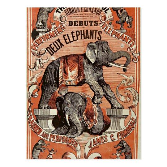 Carte Postale vintage circus elephant show postcard