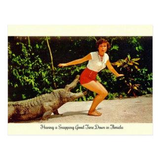 Carte postale vintage d'alligator de la Floride