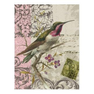 Carte postale vintage de colibri…