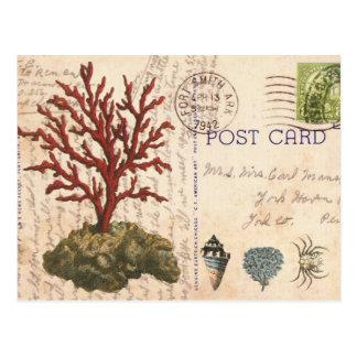 Carte postale vintage de corail et de coquillages