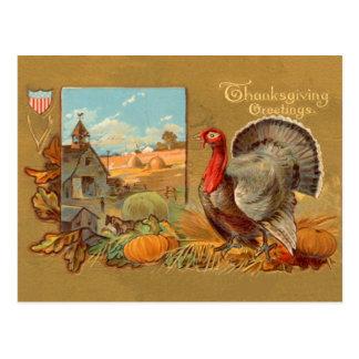 Carte postale vintage de la Turquie de