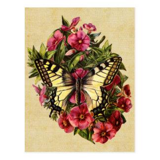 Carte postale vintage de papillon
