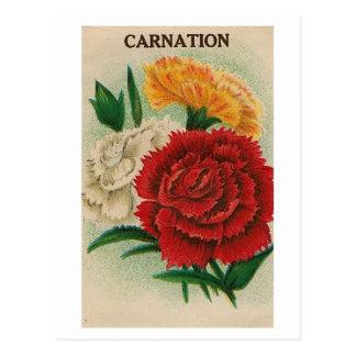 carte postale vintage de paquet de graine de