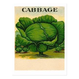 carte postale vintage de paquet de graine de chou