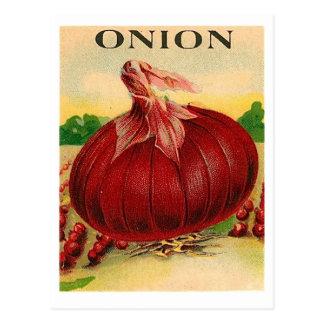carte postale vintage de paquet de graine d'oignon