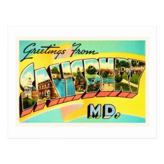 Carte postale vintage de voyage de DM de Salisbury