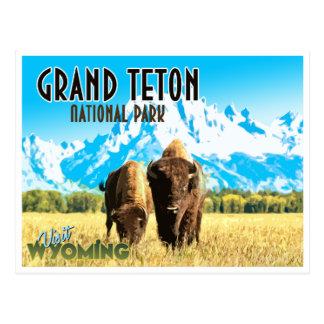 Carte postale vintage de voyage du Wyoming de parc