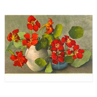 Carte postale vintage des bouquets de nasturce