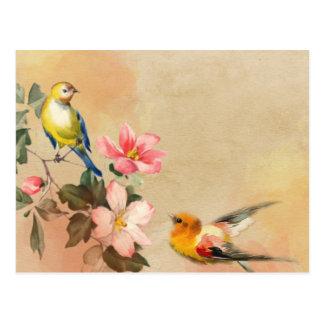 Carte postale vintage d'oiseaux