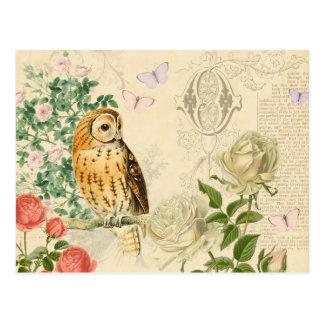 Carte postale vintage florale de hibou avec de