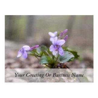 Carte Postale Violette de région boisée