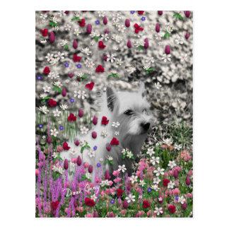 Carte Postale Violette en fleurs - chien blanc de Westie
