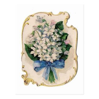 Carte Postale Violettes blanches vintages