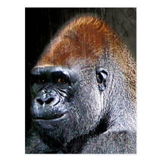 Carte Postale Visage grunge de plan rapproché de gorille de