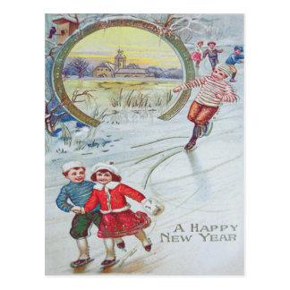 Carte Postale Volière mignonne d'étang de patinage de glace