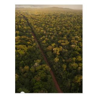 Carte Postale Vue aérienne de forêt tropicale. Réservation