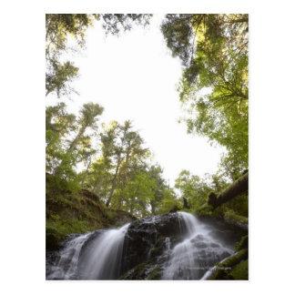 Carte Postale Vue d'angle faible d'une cascade avec la vue de