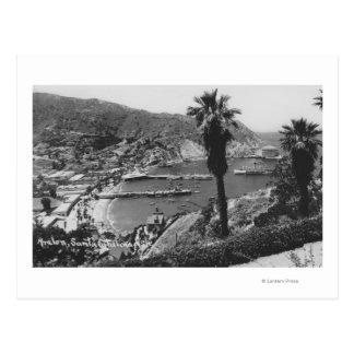 Carte Postale Vue d'Avalon, île de CA Père Noël Catalina de port