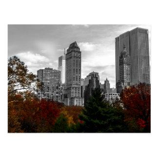 Carte Postale Vue de Central Park à New York City
