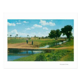 Carte Postale Vue de golfeur frappant la boule
