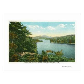 Carte Postale Vue de lac inférieur Saranac d'île de bluff