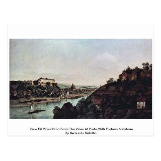 Carte Postale Vue de Pirna Pirna des vignes chez Posta