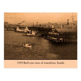 Carte Postale Vue de primevère farineuse de bord de mer, Seattle
