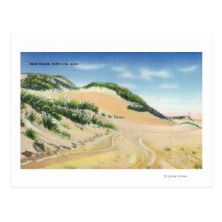 Carte Postale Vue des dunes de sable de Cape Cod