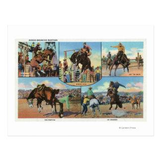 Carte Postale Vues d'OregonScenic des types de Bronco de rodéo