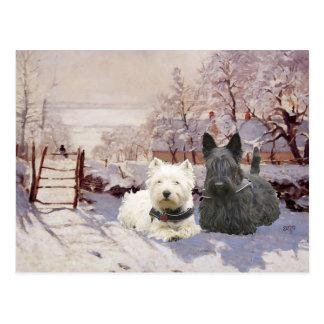 Carte Postale Westie et pie d'hiver de Scottie