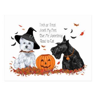 Carte Postale Westie et Scottie Halloween
