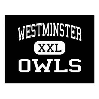 Carte Postale Westminster - hiboux - haut - Westminster le