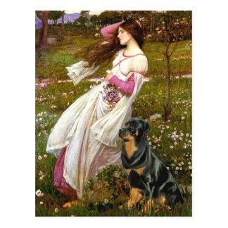 Carte Postale Windflowers - rottweiler (#5)