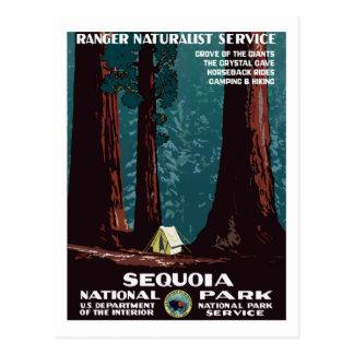 Carte Postale WPA vintage campant en parc national de séquoia