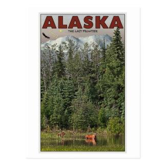 Carte Postale Wrangell-St Elias - la dernière frontière
