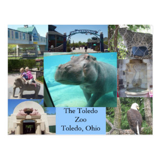 Carte Postale Zoo de Toledo