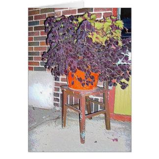 Carte : Pot de fleurs et chaise en Collines-Mpls