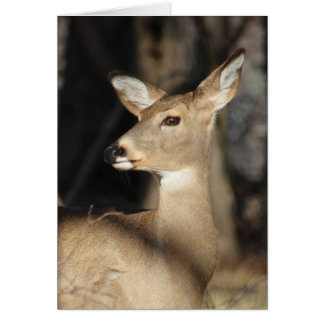 Carte pour notes de cerf de Virginie - masquez à