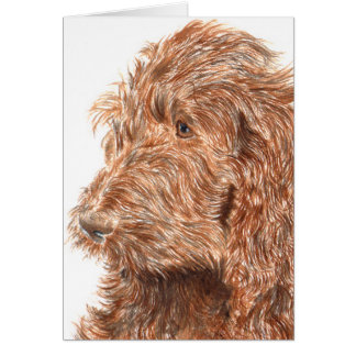 Carte pour notes de Labradoodle #2 de chocolat