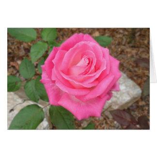 Carte pour notes de rose de rose