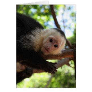 Carte pour notes de singe de capucin