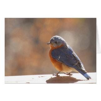 Carte pour notes d'oiseau bleu - masquez à