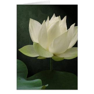 Carte pour notes floral de fleur de Lotus blanc